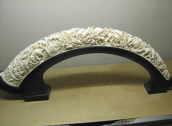 Elephant Teeth Price Ivory - History and Tr...
